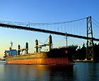 Lion Cao Shipping Deals